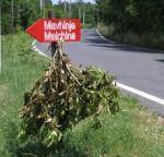 Frasca di osmizza a Malchina